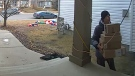 Security camera still of an unknown person removing packages from the porch of a home in northeast Calgary on December 13, 2017 (Facebook)