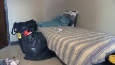 Shelter bed