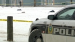 Teens in custody after fatal school yard stabbing