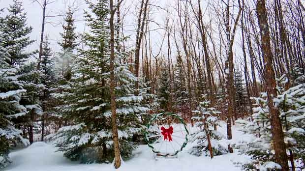 Winter wonderland in Granite Hills, Lac Du Bonnet. Photo by Gisele Eldridge.