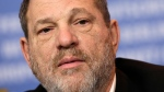 In this Feb. 9, 2015 file photo, Harvey Weinstein speaks during a news conference for film Woman in Gold at the 2015 Berlinale Film Festival in Berlin. (AP Photo/Michael Sohn, File)