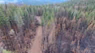 Wildfire drones