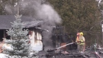 Dogs killed in Springwater fire