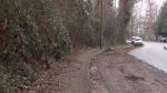 The scene of a sexual assault near Everett Crowley Park is seen in this image from Friday, Dec. 15, 2017.