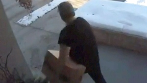Parcel stolen from front poorch