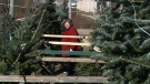 CTV Atlantic: Shoppers beat Christmas crunch