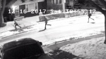 Five youths have been caught on camera as Toronto