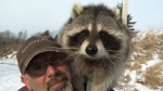 Billy Holman of East Uniacke, N.S., talks to CTV News with Rambo the raccoon on his shoulder.