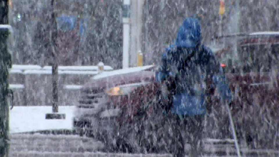 Heavy, wet snow and freezing rain caused many problems across parts of B.C.