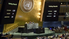 UN General Assembly vote results