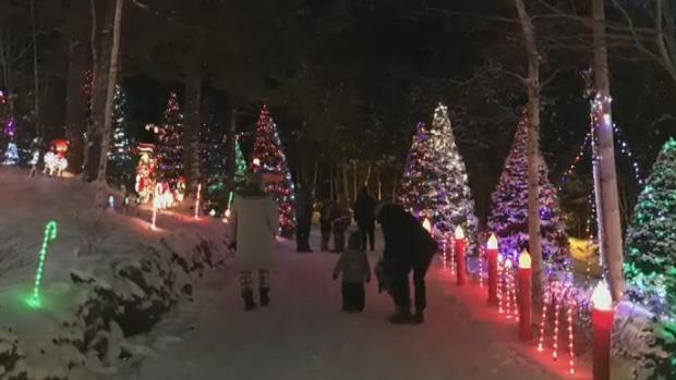 Bob Zinck uses 200,000 LED Christmas lights to pull off the display.