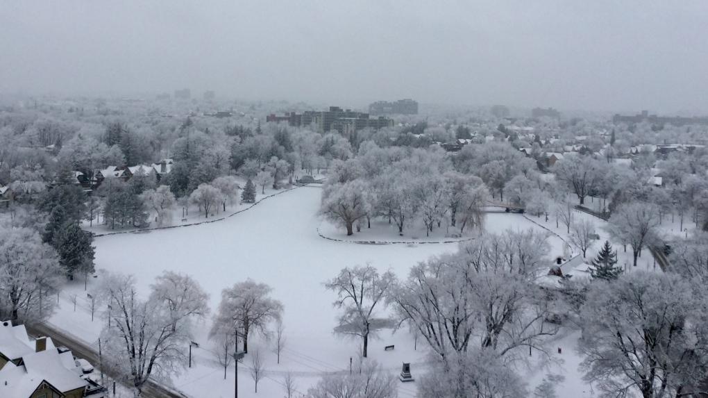 snow kitchener victoria park winter