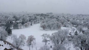 Victoria Park in Kitchener covered in snow. (Courtesy: Janet MacDowell)