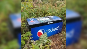 RCMP say the vending machine was abandoned in a field off the Michaud Road southwest of Grand Falls on Sept. 29. (RCMP)