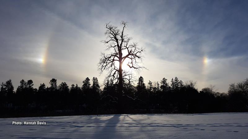 A sun dog was spotted while snowshoeing at the Arboretum on Christmas Eve. (Hannah Davis/CTV Viewer)
