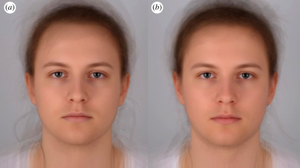 Averaged images of 16 individuals during (a) experimentally induced acute sickness and (b) placebo. (Images by Audrey Henderson, MSc, St Andrews University, using Psychomorph)