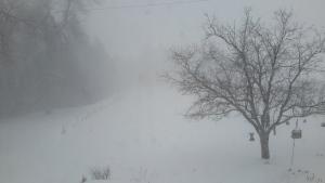 Snow is seen in Arthur, Ont., Monday, Jan. 1, 2018. (Denise Scott / MyNews)