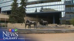 CTV Election 2017 Special News Presentation