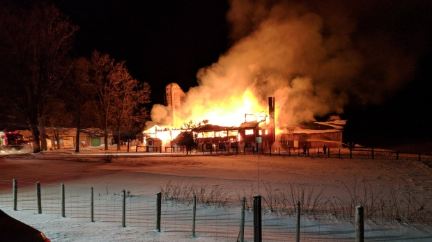 Early morning barn fire kills almost two hundred livestock ...