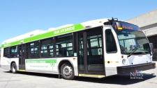 CTV Montreal: 300 buses