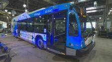New STM buses