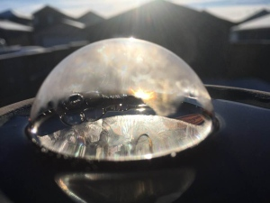 """What do you do when it's cold out? Try taking some pictures of frozen bubbles!"" (Jay Boechler)"