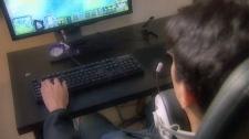 Online gaming (file photo)