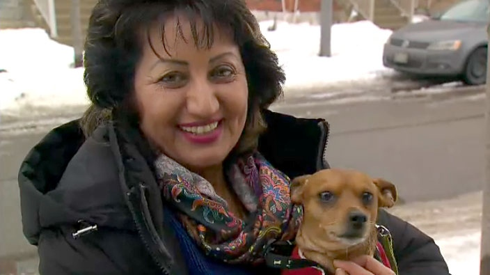 Ravinder Malhi and her dog Coco came face to face with a coyote in Markham, Ont. on Jan. 8.