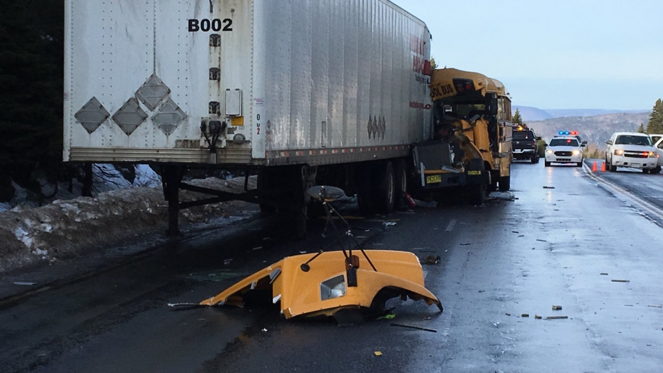 The driver of a school bus was airlifted to hospital after the vehicle collided with a tractor-trailer near Englishtown N.S. on Jan. 12, 2018.