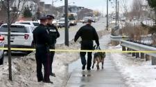Teen fatally stabed in Oshawa