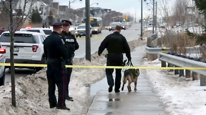 Police and members of the canine unit investigating a fatal stabbing in Oshawa on Jan. 11, 2018.