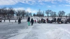 Crowd skating
