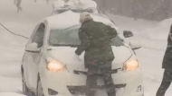 Montreal hit by snow storm