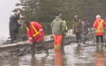 A state of emergency has been declared in Corner Brook, where crews are dealing with millions of dollars in damage caused by rapid flooding.