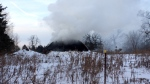 Sheep, goats and a miniature pony are among the casualties.of an early morning barn fire in Dunrobin on Monday, Jan. 15, 2018. (Jim O'Grady/CTV Ottawa)