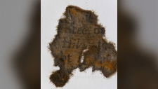 This undated photo made available by the North Carolina Department of Natural Resources shows a piece of paper from books found on board Blackbeard's ship the Queen Anne's Revenge. (North Carolina Department of Natural and Cultural Resources)