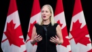 Minister of Environment and Climate Change Catherine McKenna speaks to the media before the Liberal cabinet retreat in London, Ont., on Friday, January 12, 2018. THE CANADIAN PRESS/Nathan Denette