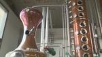 How Willibald Farm Distillery makes its gin