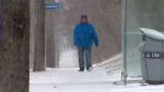 More snow expected in Toronto