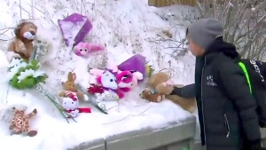A young boy places a teddy bear outside St. Raphael Catholic School in Toronto one day after a five-year-old girl died after becoming pinned between two vehicles in a pick-up zone on Jan. 15, 2018.