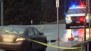 Teen girl struck and killed at crosswalk