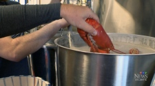 CTV News at 5: N.S. craft brewery launches lobster