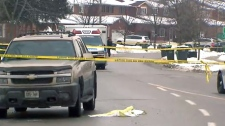 Pedestrian struck and killed in Brampton