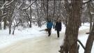 Skating through an apple orchard