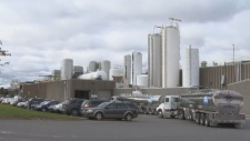 The Canadian Food Inspection Agency says it has responded to about 20 complaints about Farmers Milk in Bedford, N.S., but the company says there's no health risk.
