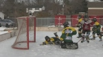 CTV Barrie: Hockey Day