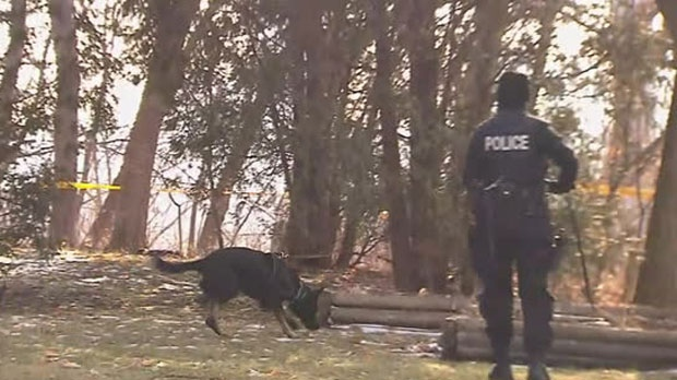 Cadaver Dogs Brought In As Police Search Leaside Property