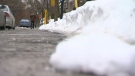 "While the streets of Cote-Des-Neiges were finally clear of snow on Jan. 21, 2018, delays in the clearing operations have been a ""baptism by snow"" for new mayor Sue Montgomery."
