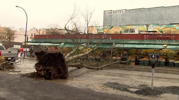 Thousands without power across BC South Coast following wind storm