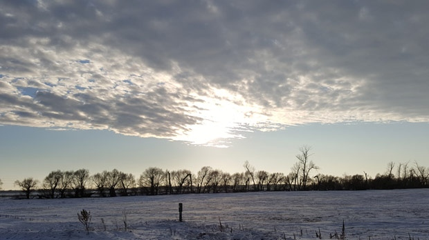 A warm and sunny afternoon outside Beausejour, Man. (Heather Bodner)